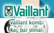 vaillant kombi kaç bar olmalı